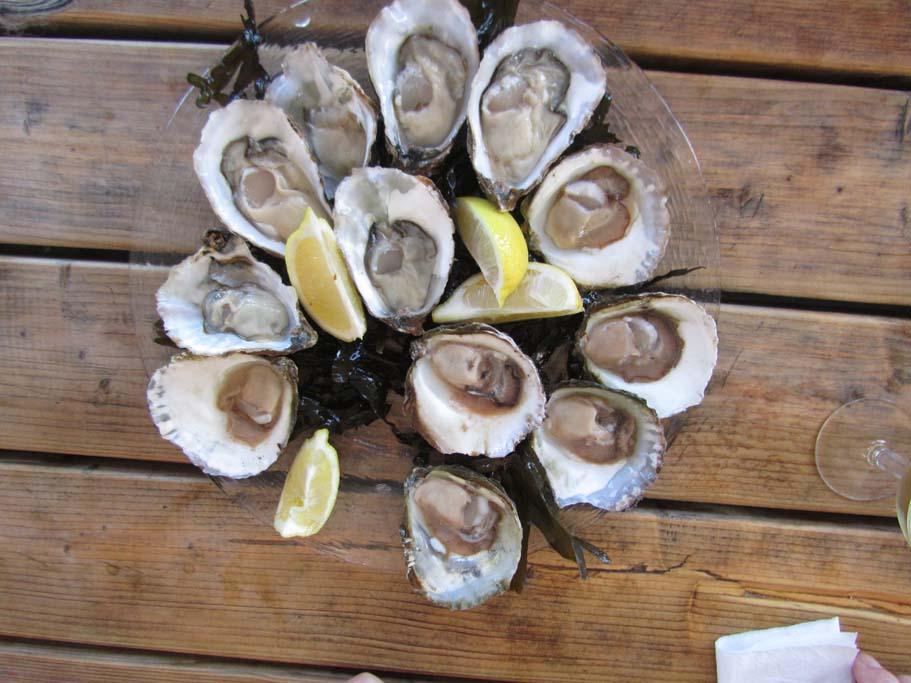 bolsmosselhandel-oesters klaar om te verorberen